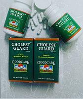 Холест Гард (Cholest Guard)