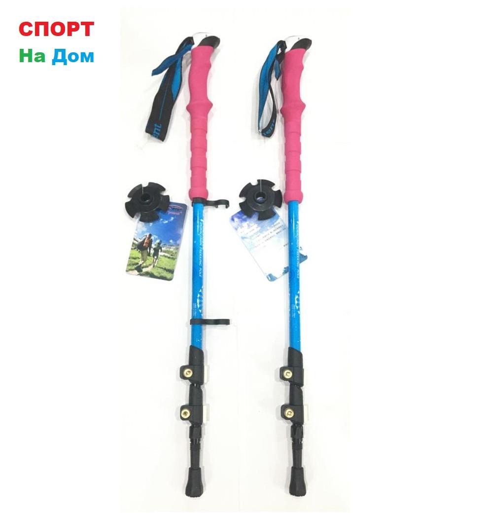 Палки для скандинавской ходьбы Exponent с неопреновой ручкой. (длина 135 см)