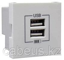Розетка USB двойная, зарядная, белая (45439 SBR)
