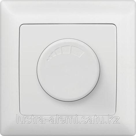 Анура белый TV, фото 2