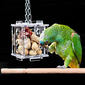 Кормушки и поилки для птиц