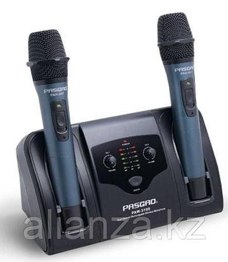 Радиосистема на два микрофона PASGAO PAW3100C/PAH907C 677.4/670.6MHz