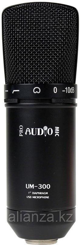 Микрофон студийный конденсаторный ProAudio UM-300