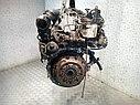 Двигатель (ДВС) Ford Fiesta 6  T3JA, фото 2