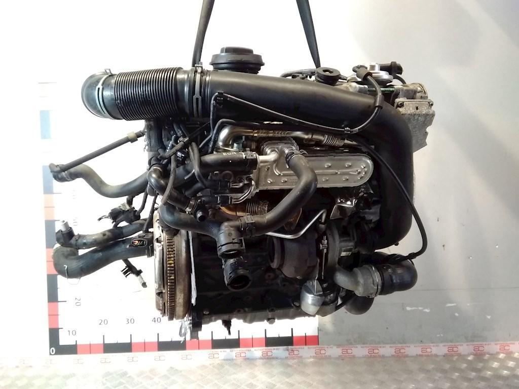Двигатель (ДВС) Volkswagen Golf Plus  BKC
