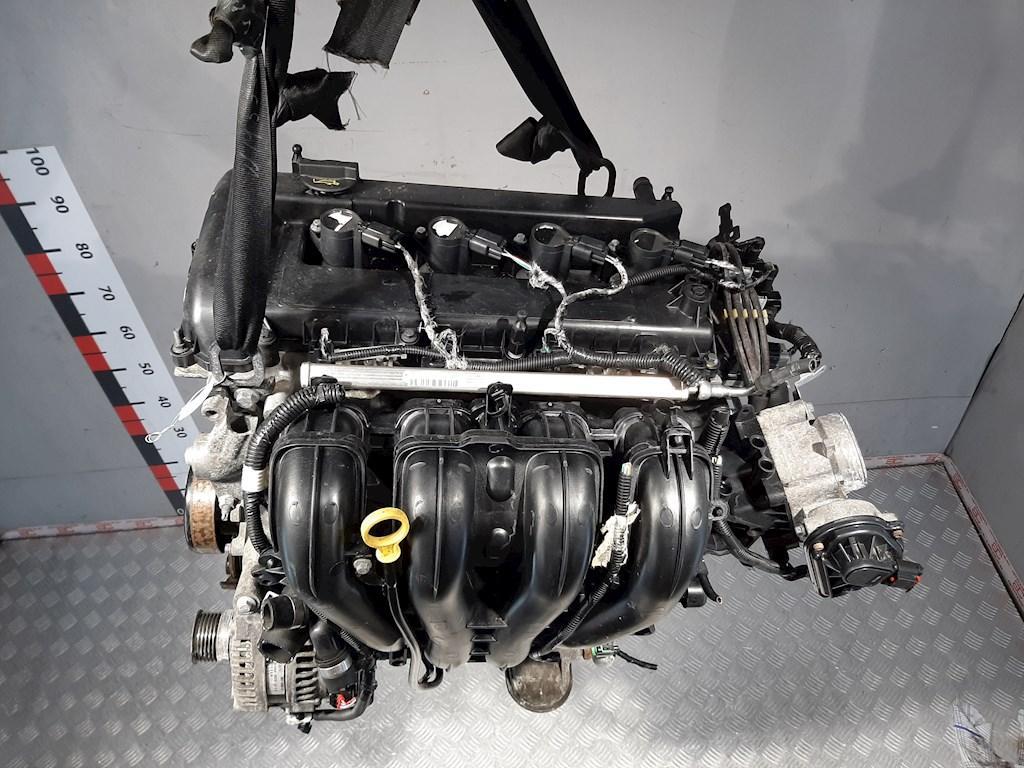 Двигатель (ДВС) Ford Focus 2  QQDB