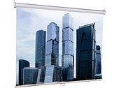 Экран для проектора Lumien Eco Picture 160х160 см LEP-100105