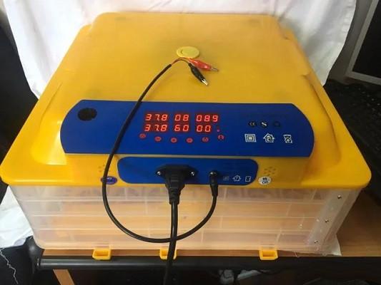 Инкубатор автоматический WQ-48 (12V и 220V)