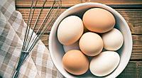 Заменитель яйца, яичных продуктов Egg Replacer-N