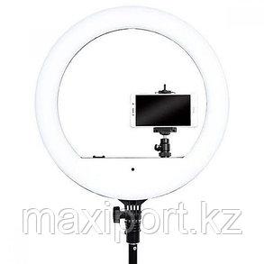 Кольцевая светодиодная лампа 46 см LED RING YQ-480B Штатив в комплекте, фото 2