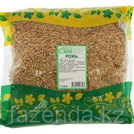 Семена сидерат  Рожь озимая 0,5 кг