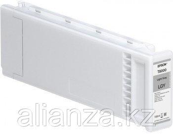 Картридж Epson T800000 Light Gray 700 мл (C13T800000)