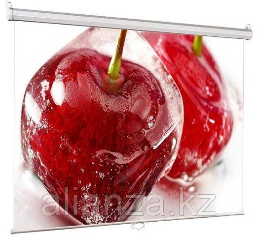 Проекционный экран ViewScreen Scroll 200x200 (1:1) (WSC-1103)