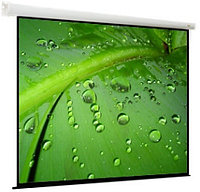 Проекционный экран ViewScreen Breston 203x203 (1:1) (EBR-1104)