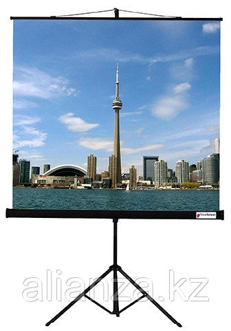 Проекционный экран ViewScreen Clamp 150x150 (1:1) (TCL-1101)