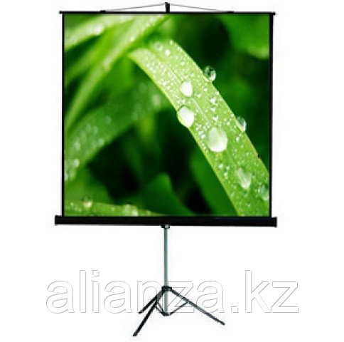 Проекционный экран ViewScreen Clamp Pro 127x127 (1:1) (TCP-1101)