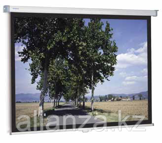 Проекционный экран Projecta SlimScreen 160x123 Datalux (10200078)