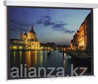 Проекционный экран Projecta ProScreen 240x183 Matte White (10200009)
