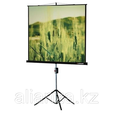 Проекционный экран Lumien Master View 203x203 см Matte White FiberGlass (LMV-100109)