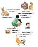 Чжинкён Ким, Чжэхон Ким: Кошачья школа: Пророчество сбывается, фото 4