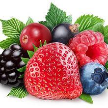 Саженцы фруктовых ягод
