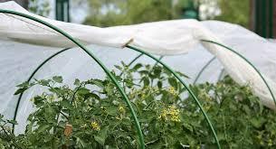 Укрывные материалы для сада и огорода