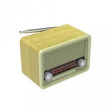 RITMIX RPR-030 Радиоприемник портативный GOLD