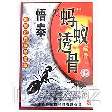 Пластырь черный муравей (для суставов)