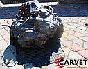 АКПП 50-42LE Kia Carnival. Кузов: 2. J3. , 2.9л., 126л.с., фото 5