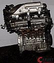 Двигатель (ДВС) KIA Sedona G6EA , фото 5