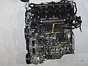 Двигатель Chevrolet Epica. X25D1. , 2.5л., 156л.с., фото 5