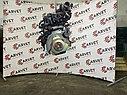 Двигатель Hyundai Accent. G4EA. , 1.3л., 83л.с., фото 5