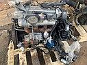 Двигатель Hyundai Grace. D4BA. , 2.5л., 80л.с., фото 6