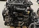 Двигатель Hyundai Santa fe. Кузов: 3. D4HB. , 2.2л., 197л.с., фото 6