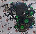 Двигатель Hyundai Sonata. G4GC. , 2.0л., 137-143л.с. VVTi, фото 3