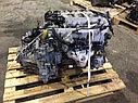 Двигатель Hyundai Sonata. Кузов: 5. G6BV. , 2.5л., 160-173л.с., фото 5