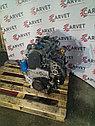 Двигатель Hyundai Trajet. D4EA. , 2.0л., 112-113л.с., фото 5