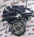 Двигатель Kia Carens. L4KA. , 2.0л., 144л.с., фото 4