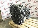 Двигатель Kia Carnival. G6EA. , 2.7л., 189л.с., фото 5