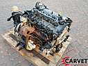 Двигатель Kia Ceed. D4FB. , 1.6л., 115л.с., фото 3