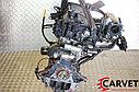 Двигатель Kia Rio. G4EE. , 1.4л., 97л.с., фото 4