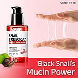 Восстанавливающая сыворотка с муцином чёрной улитки Some By Mi Snail Truecica Miracle Repair Serum, фото 4
