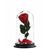 Роза в колбе 22см STANDART, фото 1