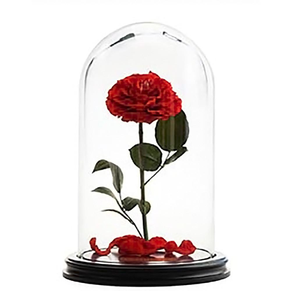 Роза в колбе 33см VICTORIA