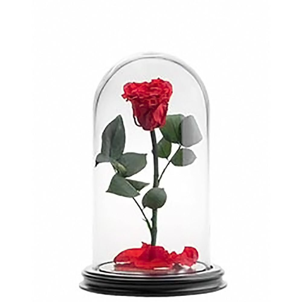 Роза в колбе 28см PREMIUM