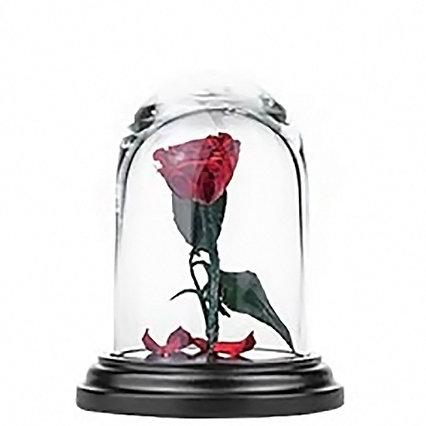 Роза в колбе 12см MINI