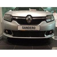 Защитная сетка/решетка радиатора для Renault Sandero/Рено Сандеро 2014-