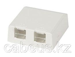 Коробка для настенного монтажа Panduit Mini-Com, внешняя, 24х61х63,5 мм ВхШхГ, со шторками, 2 модуля, цвет: белый