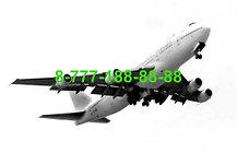 Перевозка умершего самолетом, груз 200 перевозка, фото 2