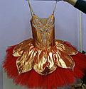 Пошив балетных пачек и шопенок, фото 4